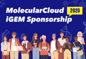 MolecularCloud iGEM teams in 2020.